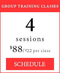 Group Training Classes - 4 sessions, $88/$22 per class.