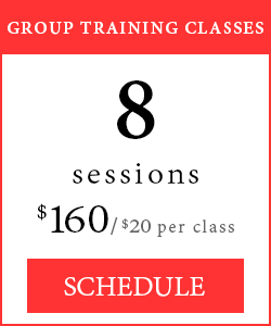 Group Training Classes - 8 sessions, $160/$20 per class.
