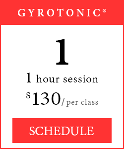 GYROTONIC® Classes - 1 1-hour session, $130 per class.
